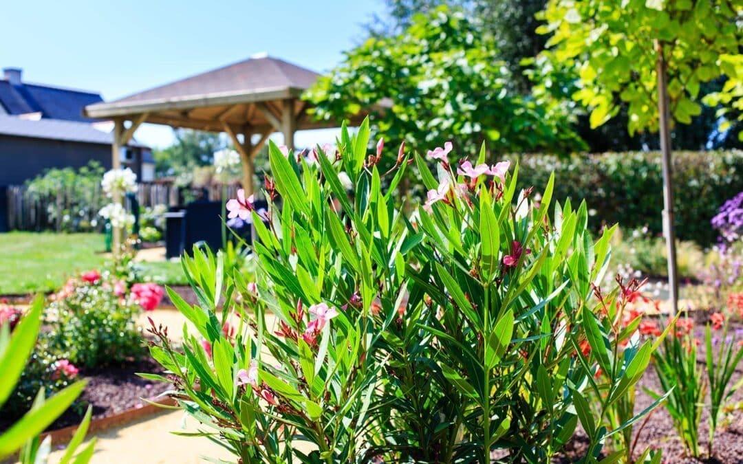 Création d'un jardin à Piriac sur Mer, ManuPaysage entreprise paysagiste en Presqu'ile de Guérande